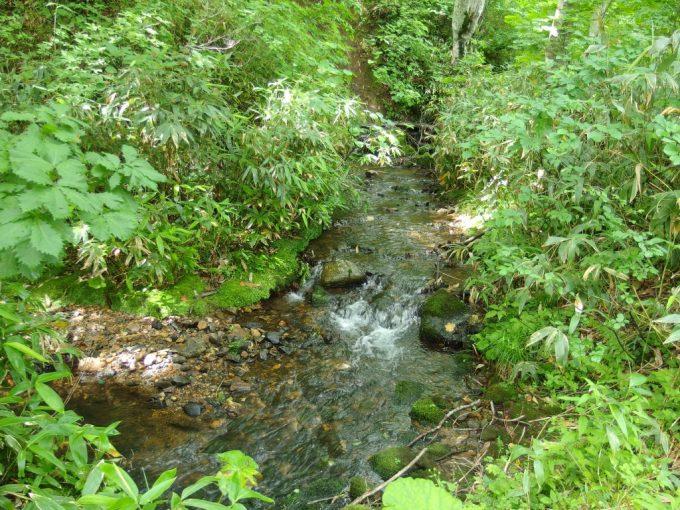 日本三秘湯谷地温泉そばの清流