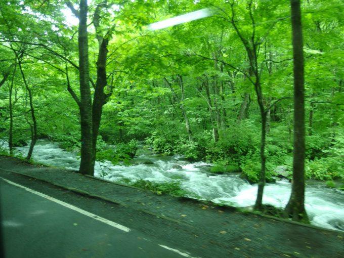 JRバス東北みずうみ号車窓から眺める奥入瀬の渓流