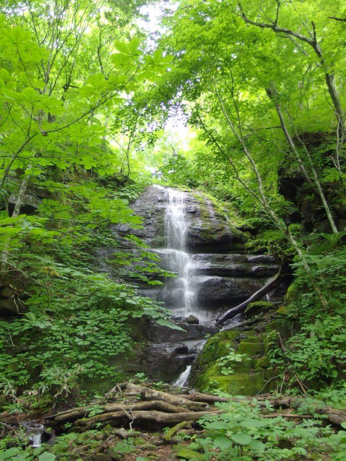 夏の奥入瀬渓流九段の滝