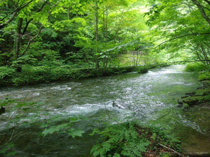 国道と近接する奥入瀬渓流