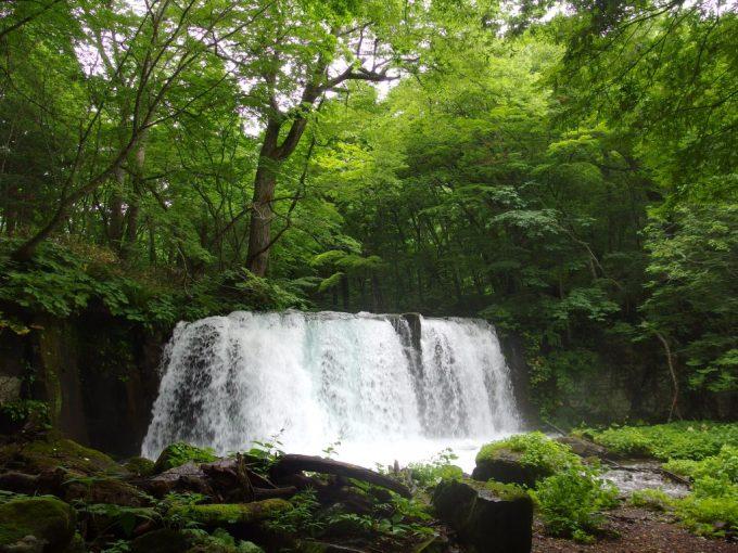 夏の奥入瀬渓流銚子大滝魚止めの滝