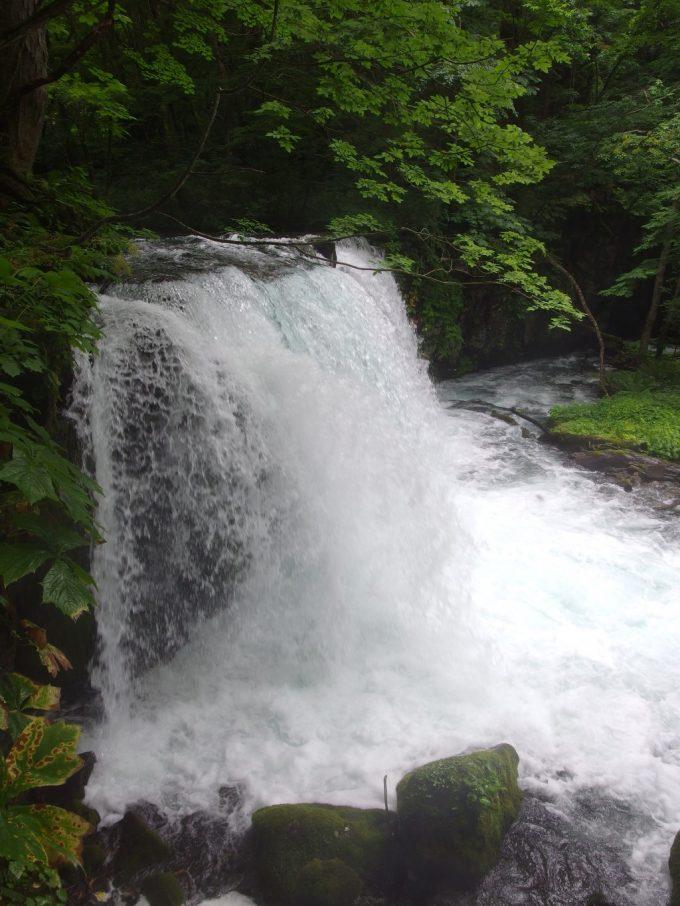 豊富な水量に圧倒される銚子大滝