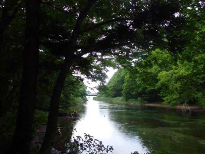 子ノ口水門を過ぎ十和田湖はもう目の前