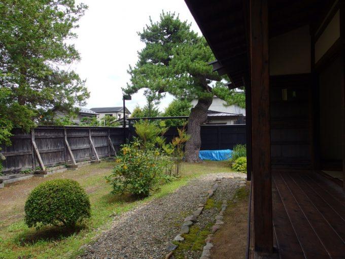 弘前武家屋敷旧伊東家縁側から眺める松
