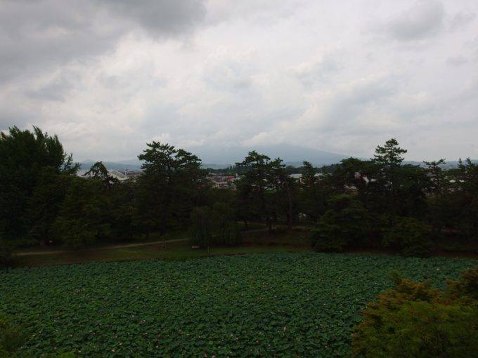 弘前城天守から望む岩木山