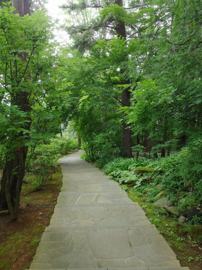 弘前藤田記念庭園緑に包まれた階段を下りて低地部へ