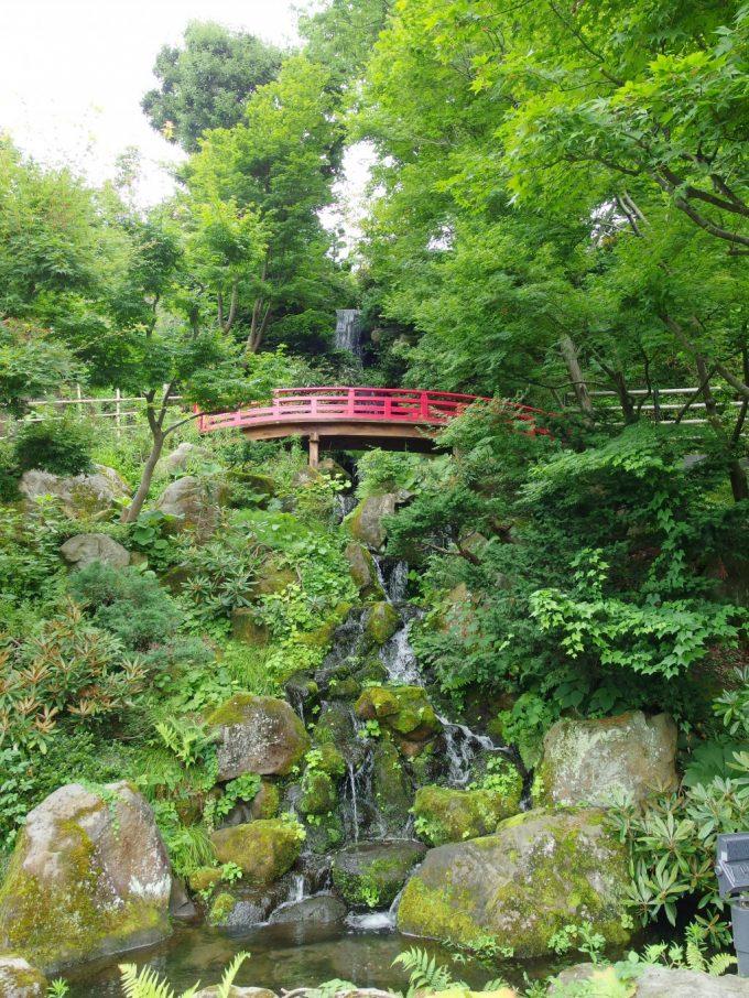 弘前藤田記念庭園滝と赤い橋