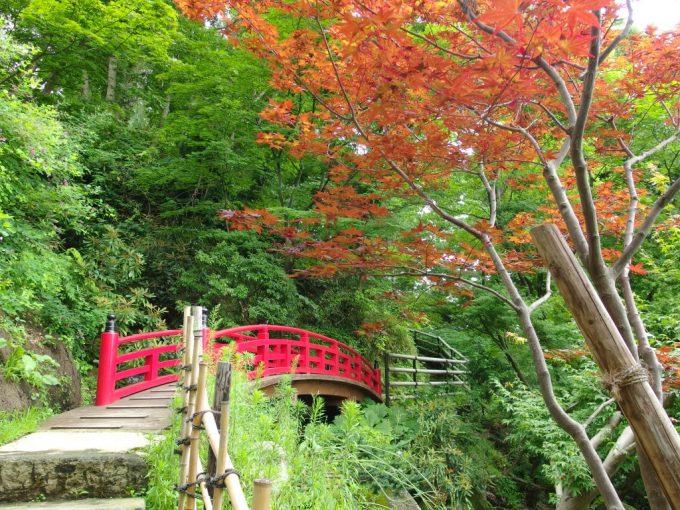 弘前藤田記念庭園気の早い紅葉と赤い橋