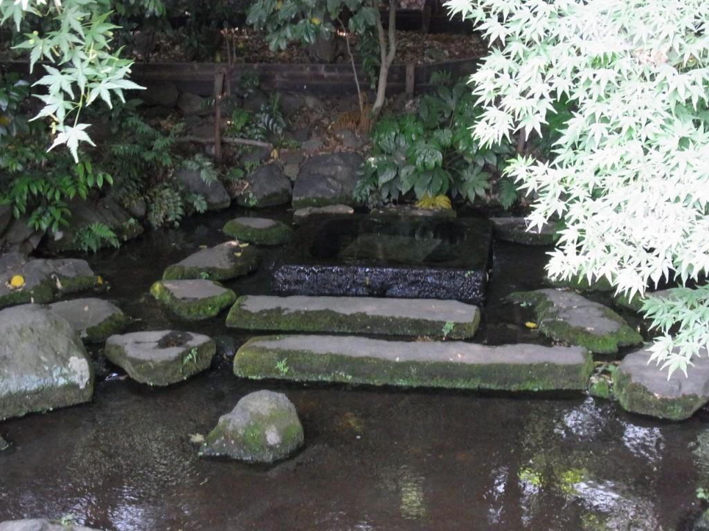 井の頭池・神田川の源お茶の水湧水