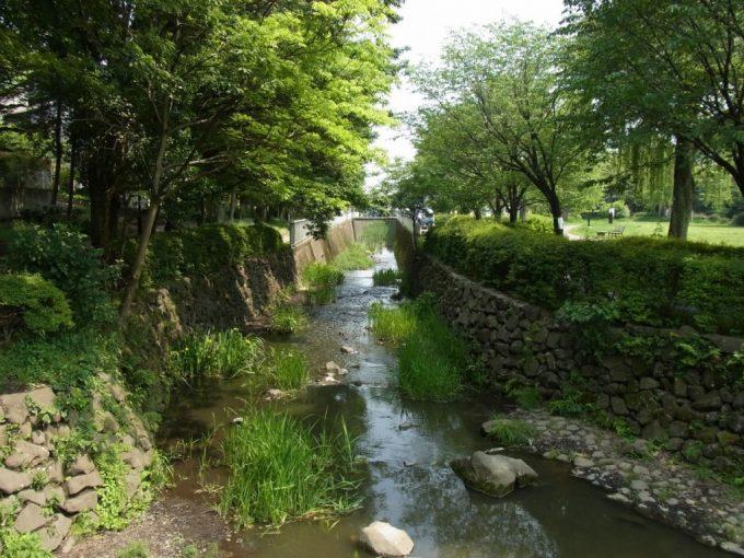 公園を出て都市河川に変貌する神田川