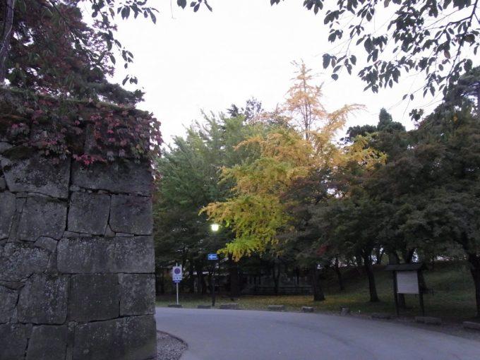 秋の会津若松色づく銀杏と石垣