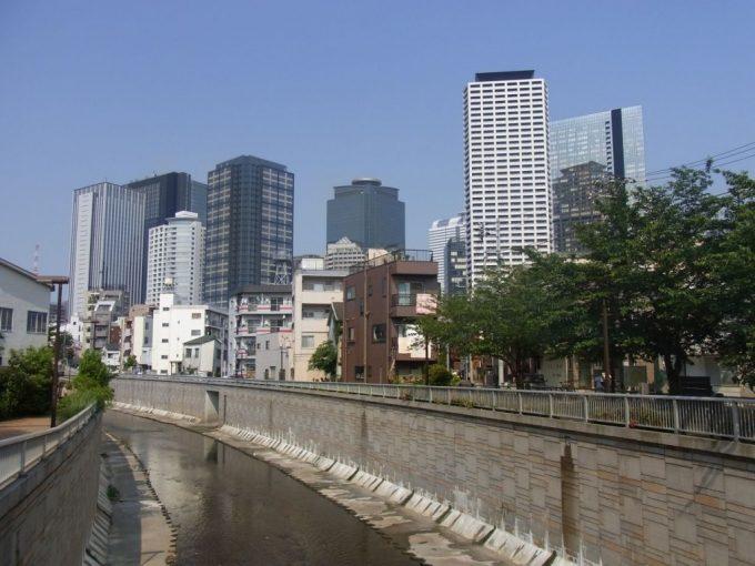 神田川沿いの街並みと新宿ビル群