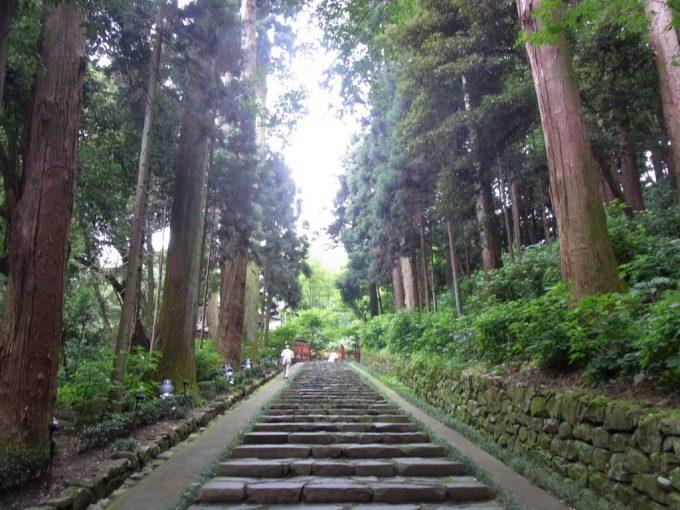 仙台瑞鳳殿杉並木と石段