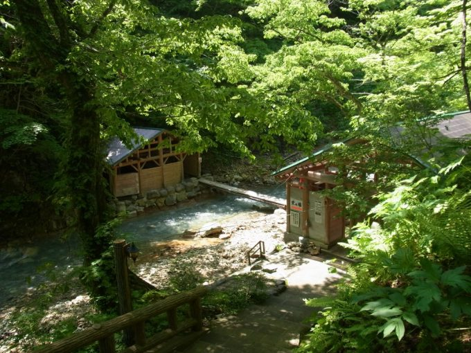 初夏の夏油新緑の真湯と目(女)の湯