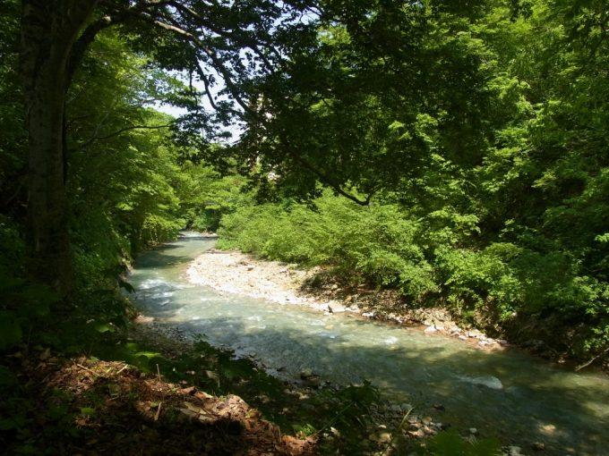 さらさらと流れる新緑の頃の夏油川