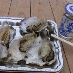 北上展勝地桜まつりかき小屋の焼き牡蠣