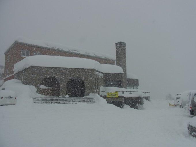 雪のジェイファーストニセコ