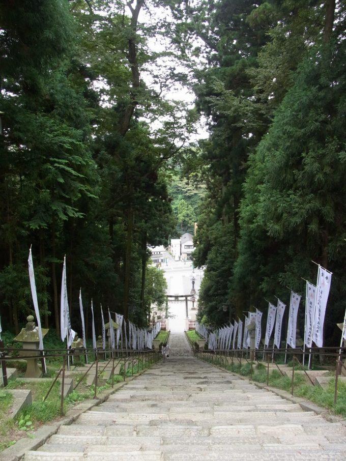 陸奥国一之宮東北鎮護鹽竈神社石段上より下を見る