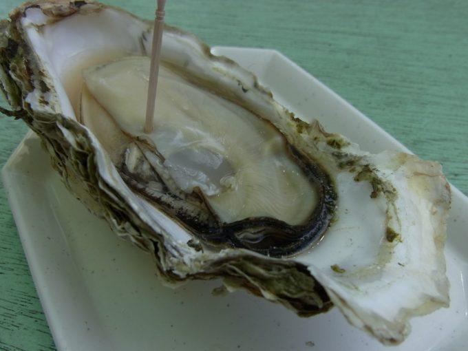 日本三景松島を眺めながら焼き牡蠣