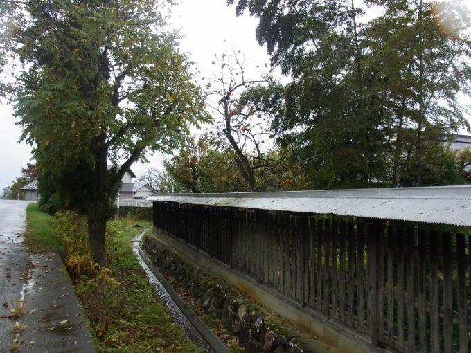 会津喜多方黒塀と用水路、秋の柿