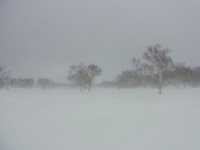 雪にけむるニセコグランヒラフ花園エリア