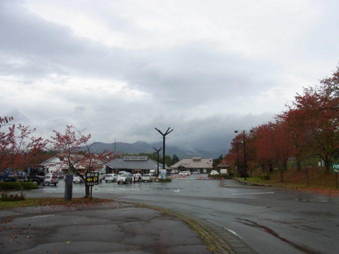 桜紅葉に彩られた道の駅喜多の郷