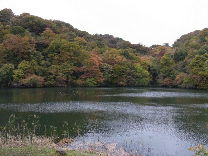 紅葉の十二湖散策