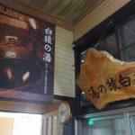 南温泉峡鉛温泉藤三旅館名物立ち湯白猿の湯