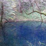 幻想的な青池
