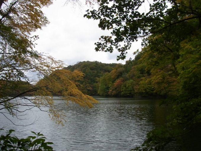 秋の十二湖鶏頭場の池