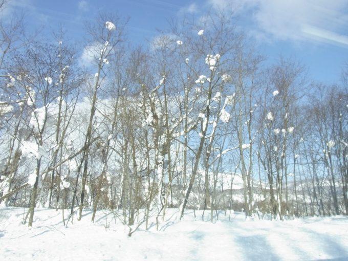 函館本線より冬のアンヌプリ