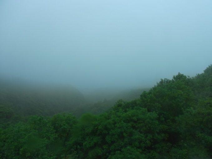 乳白の霧に包まれた幻想的な八幡平