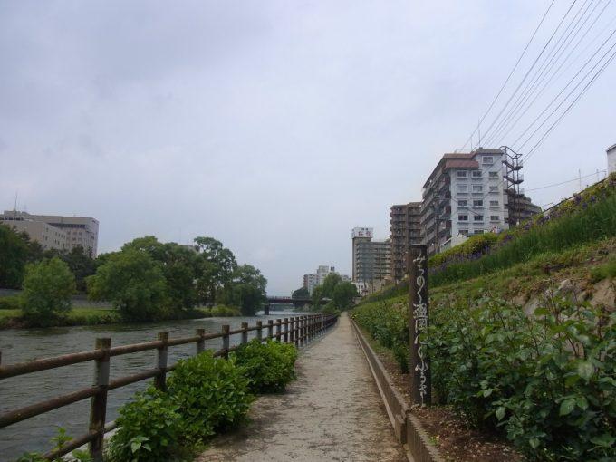初夏の盛岡北上川をのんびり散策