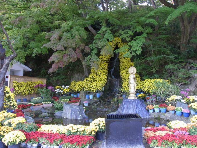 秋の二本松霞ヶ城跡菊まつり滝を彩る菊