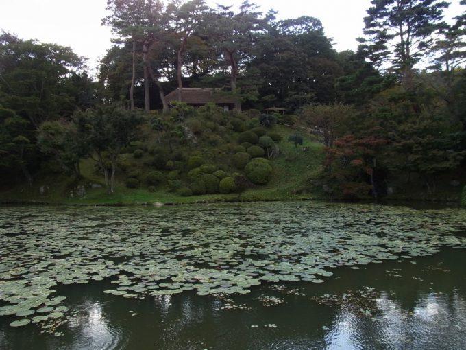 二本松城跡池と洗心亭