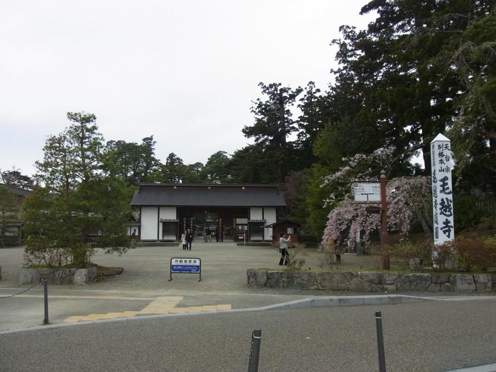 春の平泉毛越寺入口