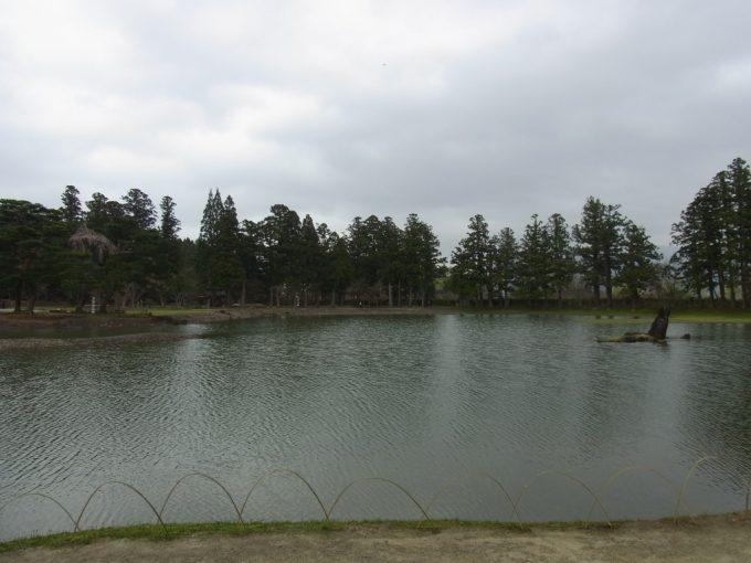 春の毛越寺大泉ヶ池