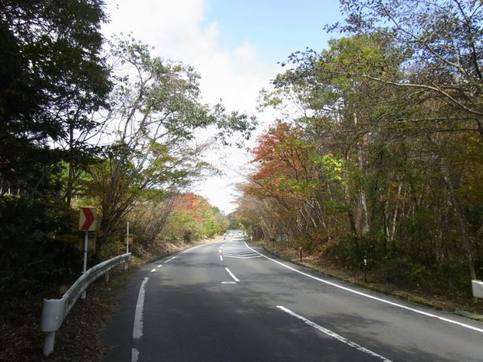 紅葉に彩られた道