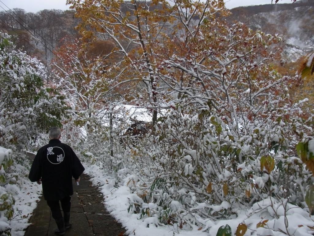 乳頭温泉黒湯温泉行きと紅葉に彩られた小路