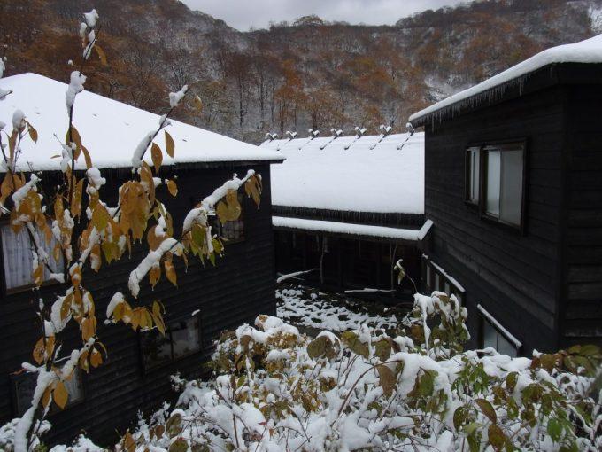 乳頭温泉郷黒湯温泉雪と黒い建物