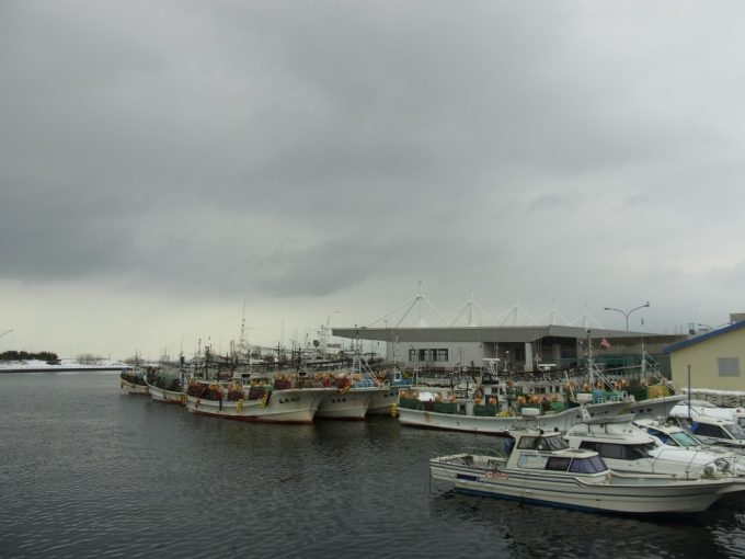 冬の函館いか釣り船