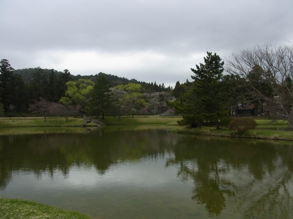 春の平泉観自在王院跡の池