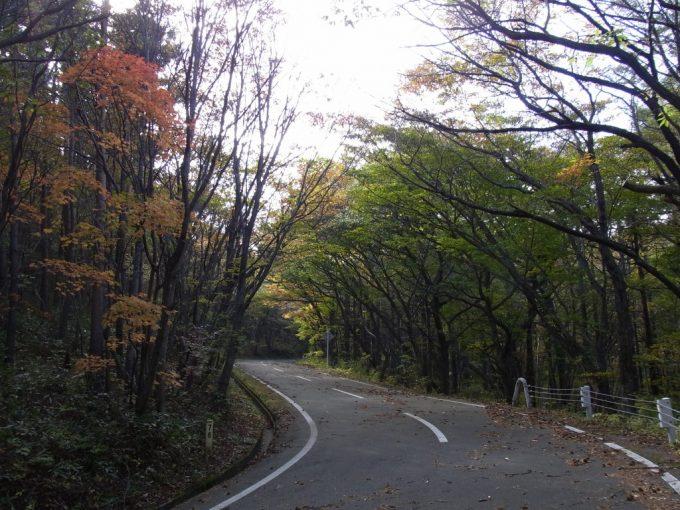 秋に色づく土湯の峠道