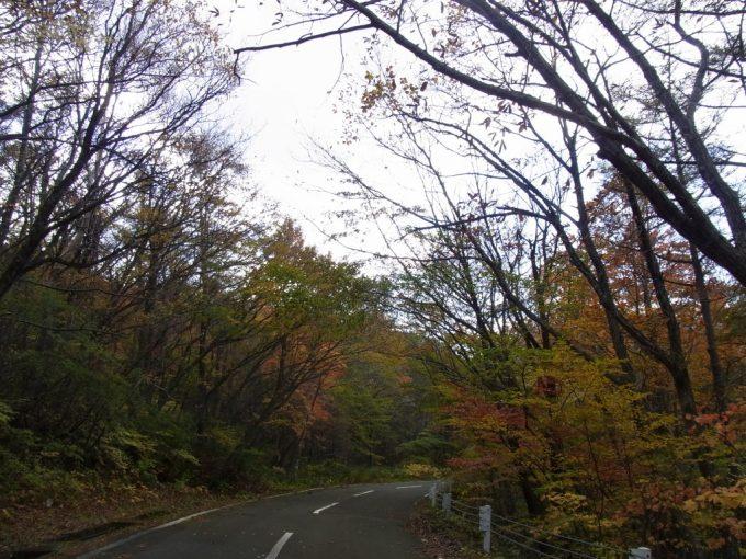 土湯旧道標高を上げ色づく木々