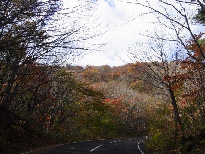 旧道を包む一面の紅葉