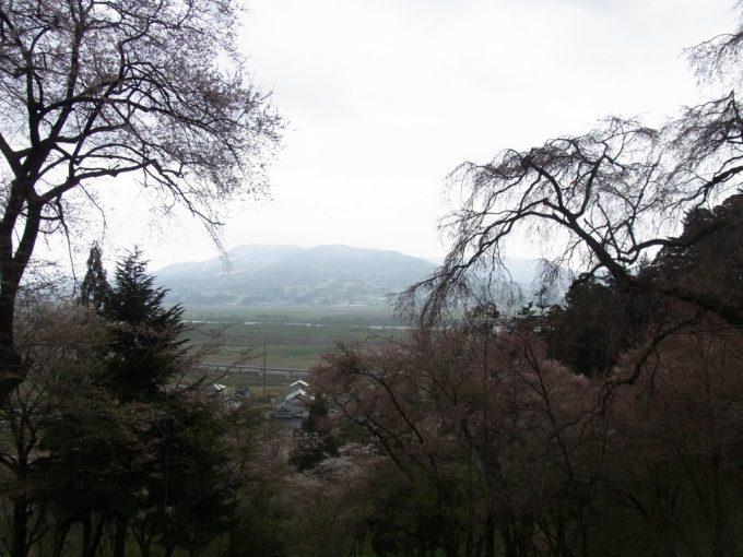 桜と若い緑越しに眺める春霞の平泉