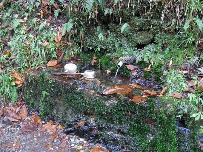 抱返り渓谷岩肌から湧く清水