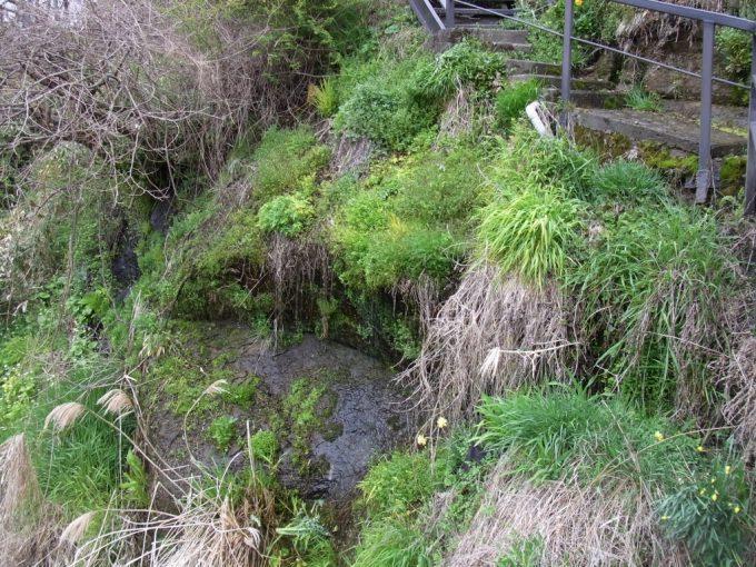 天然記念物厳美渓岩肌からしみ出す清水