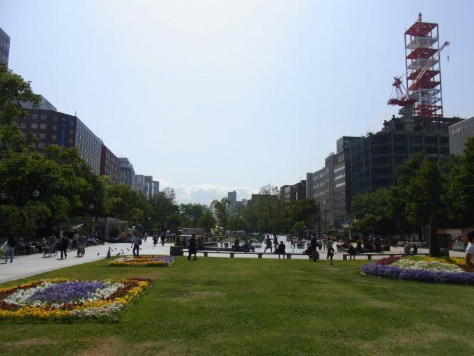 芝生とパンジー初夏の大通公園