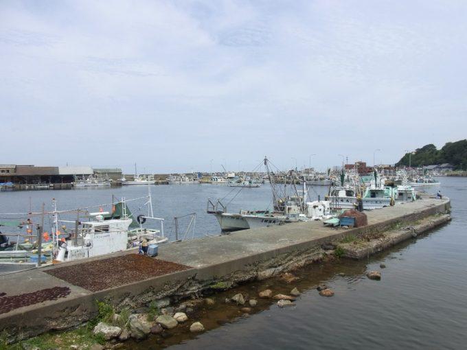 夏の深浦漁港海藻を広げる光景